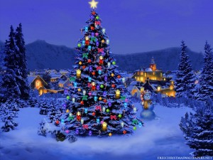 Christmas tree all lit up